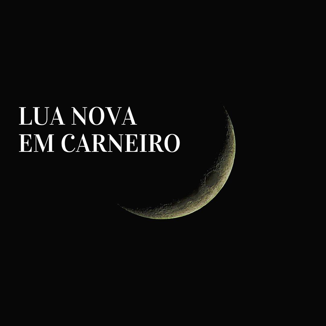 LUA NOVA EM CARNEIRO